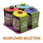 Seed-Bombs-Spread-Flowers-Not-Bombs